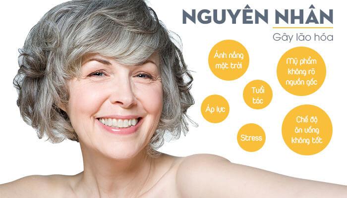 Kem chống lão hóa Skinvision Night Cream